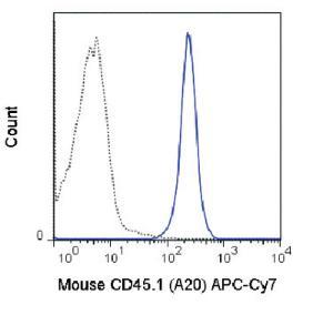 Anti-CD45.1 Mouse Monoclonal Antibody (APC (Allophycocyanin))/Cy7®) [clone: A20]