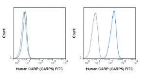 Anti-LRRC32 Mouse Monoclonal Antibody (FITC (Fluorescein)) [clone: GARP5]