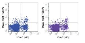 Anti-TIGIT Mouse Monoclonal Antibody (PE (Phycoerythrin)) [clone: 1G9]