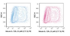 Anti-IL-23/IL-12p40 Rat Monoclonal Antibody (PE (Phycoerythrin)) [clone: C17.8]