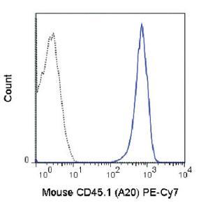Anti-CD45.1 Mouse Monoclonal Antibody (PE (Phycoerythrin)/Cy7®) [clone: A20]