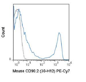 Anti-Thy1.2 Rat Monoclonal Antibody (PE (Phycoerythrin)/Cy7®) [clone: 30-H12]