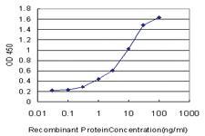 Anti-SOX21 Mouse Monoclonal Antibody