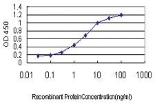 Anti-TNFRSF8 Mouse Monoclonal Antibody