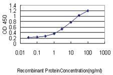 Anti-TREM1 Mouse Monoclonal Antibody
