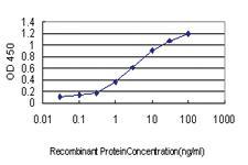 Anti-ICOSLG Mouse Monoclonal Antibody