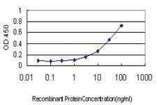 Anti-ITGB2 Mouse Monoclonal Antibody