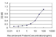 Anti-KCTD4 Mouse Monoclonal Antibody