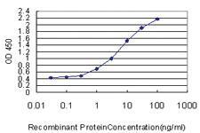Anti-MUC7 Mouse Monoclonal Antibody
