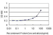 Anti-NR0B2 Mouse Monoclonal Antibody