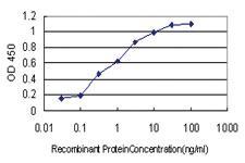 Anti-NUDT3 Mouse Monoclonal Antibody