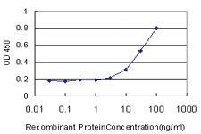 Anti-PHC1 Mouse Monoclonal Antibody