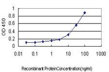 Anti-PLCD4 Mouse Monoclonal Antibody